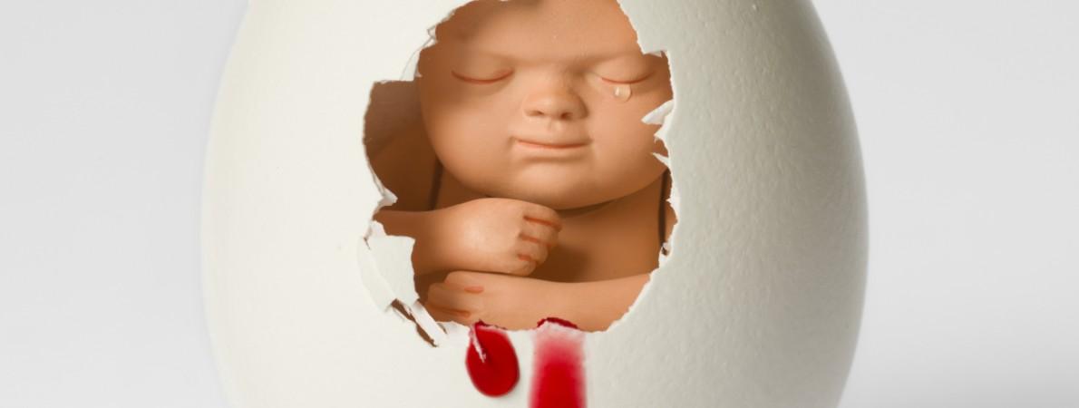 Reactie NPV op jaarrapportage Wet afbreking zwangerschap