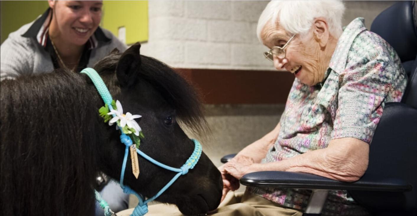 Makkelijker euthanasie bij diep demente patiënten. Het hellend vlak wordt werkelijkheid