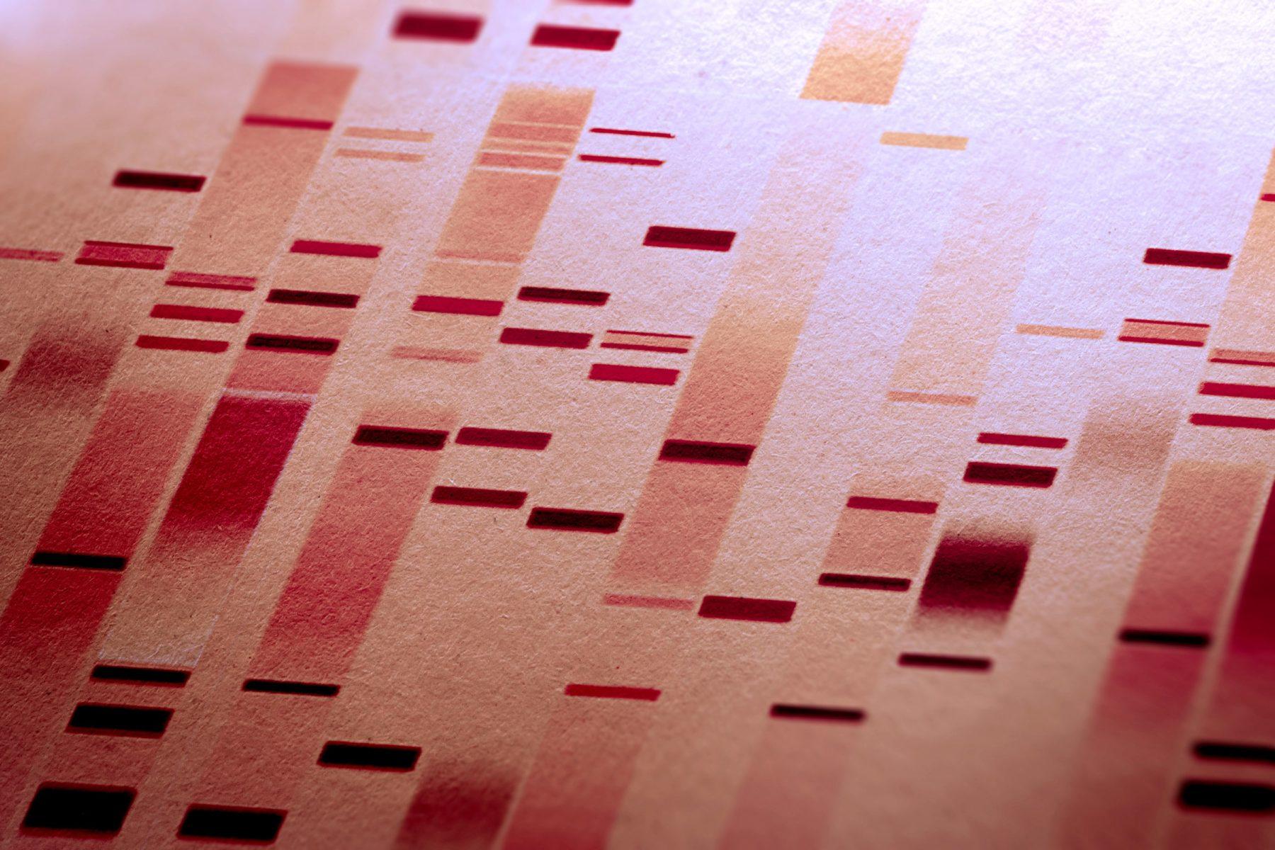 Embryo-DNA aanpassen
